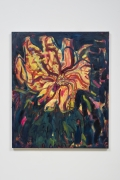 Untitled Flower, 2015, Oil on canvas