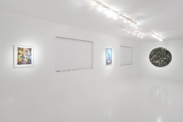 "Installation View ""The Science of Complexity"""