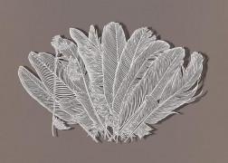 Trimming Feathers, 2012