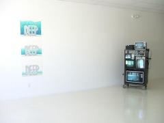 Installation View The Second Palm Beach Biennial, 2008