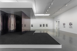 Catherine Opie - The Modernist