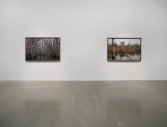 Catherine Opie - Rhetorical Landscapes