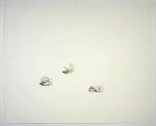 Toba Khedoori, Untitled (Crumpled Paper)