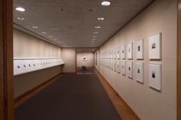 James Welling Art Institute of Chicago