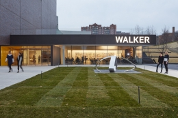 Liz Larner - Walker Art Center