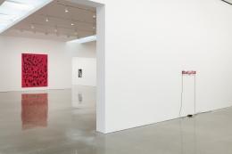Glenn Ligon - Untitled (America)/Debris Field