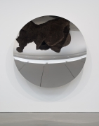 Anish Kapoor - Full Moon