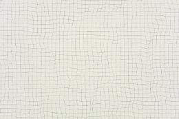 Toba Khedoori - grid