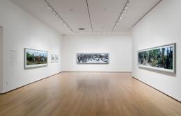 Scott McFarland - MOMA