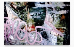 Marilyn Minter, Private Eye