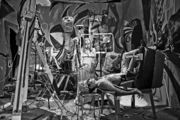 John Bock - Im Schatten der Made