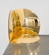 Anish Kapoor - Gold Corner