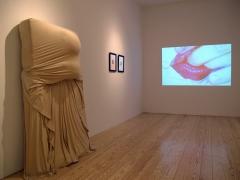 Hair and Skin, installation view at Derek Eller Gallery, New York