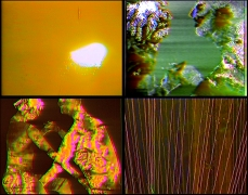 Intercourses, 2014 three channel video with sound