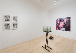 Fictions, 2015, installation view