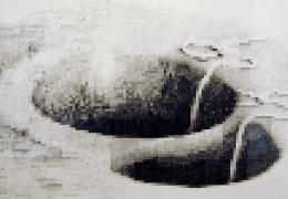 Un, 2002, graphite on paper