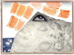 Untitled, 2007, color pencil, graphite and collage on paper