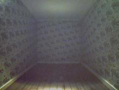 Adam Putnam, Untitled (Shadow Room III), 2005