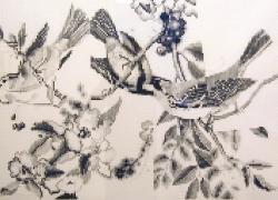 Sounder, 2002, graphite on paper