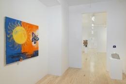 A Rare Earth Magnet, installation view at Derek Eller Gallery, New York