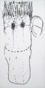 Dan Fischer Guston's Caricature of John Cage, 2014