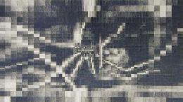 *, 2004, graphite on paper
