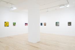 André Ethier,Under Grape Leaves, installation view at Derek Eller Gallery, New York