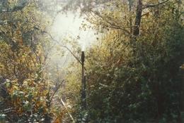 Sprinkler, 2004, c-print