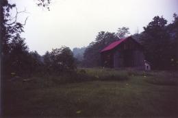 Fireflies, 2002, c-print