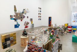 Nancy Shaver, fastness, slowness and Monstrous Beauty, installation view at Derek Eller Gallery, New York
