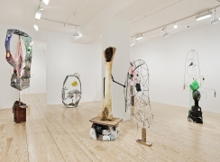 Michelle Segre, Lost Songs of the Filament, installation view at Derek Eller Gallery, New York