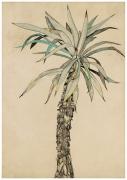 Lucian Freud, Palm Tree, 1942