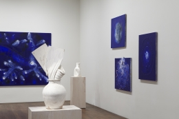 Installation view of Miquel Barceló at Acquavella Galleries from October 27 - December 9, 2016.