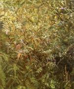 Lucian Freud, Garden, Notting Hill Gate, 1997