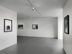 Installation view, Walton Ford, New Watercolors, Vito Schnabel Gallery, St. Moritz© Walton Ford; Courtesy the artist and Vito Schnabel Gallery; Photos by Stefan Altenburger