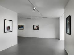 Installation view, Walton Ford,New Watercolors, Vito Schnabel Gallery, St. Moritz©Walton Ford; Courtesy the artist and Vito Schnabel Gallery; Photos by Stefan Altenburger