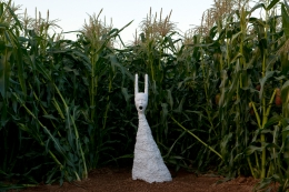 Installation view, Terence Koh, Children of the Corn​, Long Island, 2010