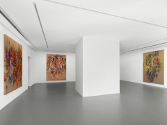 An installation view of Spencer Lewis's exhibition