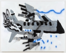 Robert Nava, Chem Trails and Private Jet, 2020