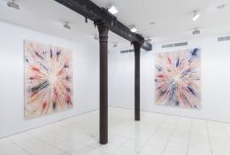 Installation view, Harmony Korine, Vito Schnabel Projects, New York, 2016