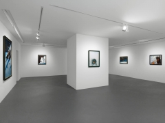 Installation view, Walton Ford, New Watercolors, Vito Schnabel Gallery, St. Moritz