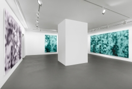Installation view, Jeff Elrod, Figment, Vito Schnabel Gallery, St. Moritz, 2016, © Jeff Elrod