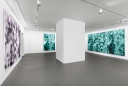 Installation view, Jeff Elrod,Figment, Vito Schnabel Gallery, St. Moritz, 2016, © Jeff Elrod