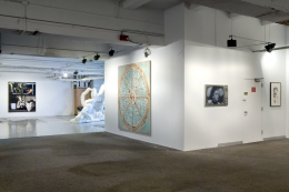Installation view, Group Show, DSM-V​, New York, 2013