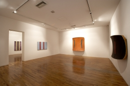 Installation view,Ron Gorchov,Double Trouble, MoMA PS1, Long Island City,New York, 2006