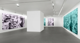 Installation view, Jeff Elrod,Figment, Vito Schnabel Gallery, St. Moritz, 2016