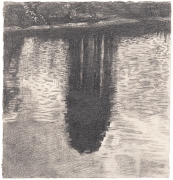 Pond Reflection, 2015
