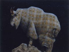 An Argument for Solipsism (Mountain Goat)