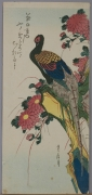 Hasegawa Sadanobu I (1809-79), Pheasant perched on a precipice with red chrysanthemums