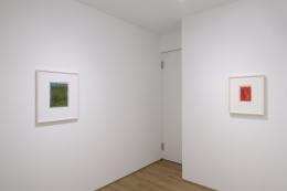 Installation view of Ilse D'Hollander at Sean KellyAsia